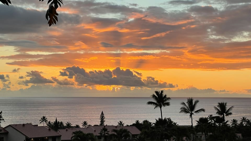 Good and bad days for Hawai'i businesses