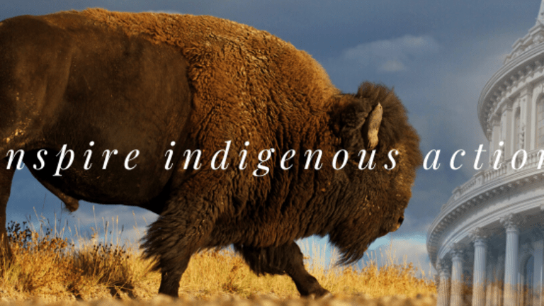 Crow Tribe partners with Montana Native Vote to get members counted in the 2020 Census