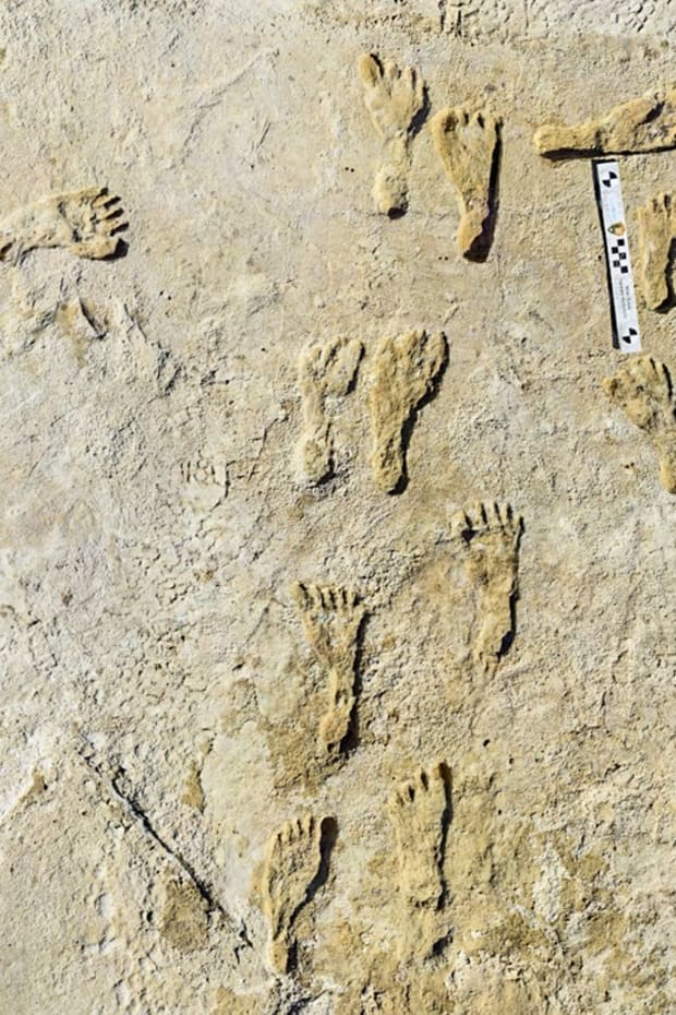 This undated photo made available by the National Park Service in September 2021 shows fossilized human fossilized footprints at the White Sands National Park in New Mexico. (Photo courtesy of National Park Service)