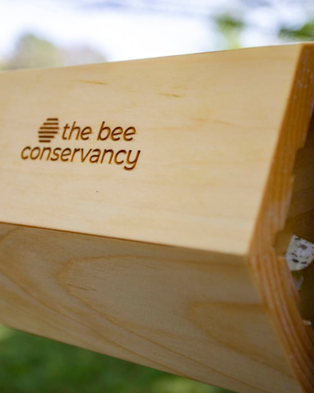 Pictured: The Cherokee Nation received two native bee houses from The Bee Conservancy organization this week through the organization's Sponsor-A-Hive program. The new houses were installed Wednesday and will be among 16 other bee pollinator homes in the tribe's heirloom garden.