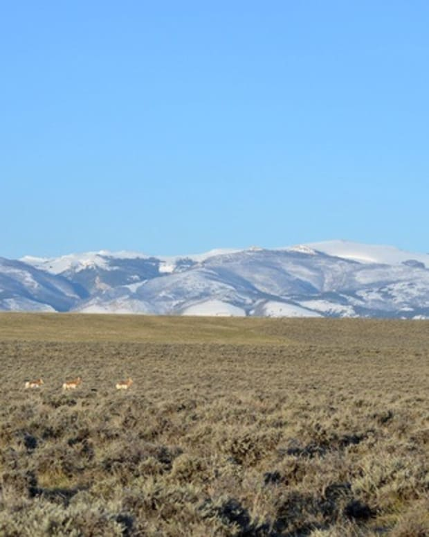The Wind River Reservation in Wyoming, home to the Northern Arapaho and Eastern Shoshone tribes, is one of the largest reservations in the United States. (Photo courtesy of U.S. Fish and Wildlife Services)