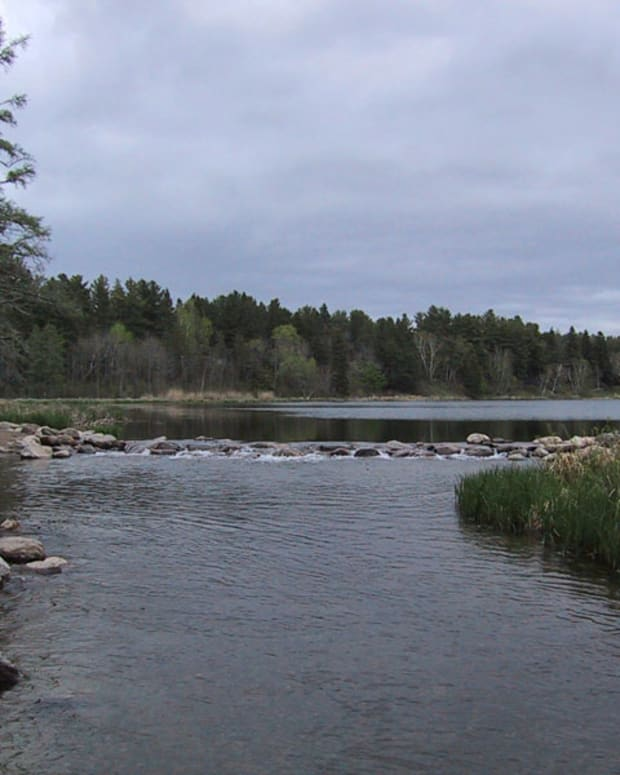 Pictured: The source of the Mississippi River on the edge of Lake Itasca in Itasca State Park, Minnesota in May 2004.