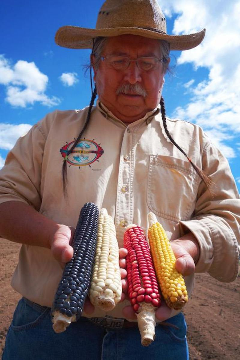 "Farmer Clayton Brascoupe holds a selection of beautiful corn in ""Seed."""