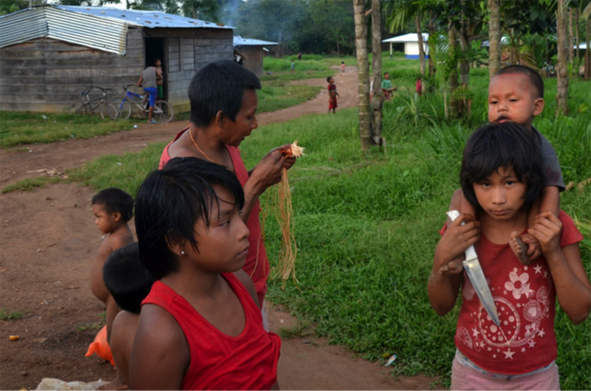 Nukak population in Columbia, face deforestation concerns with road