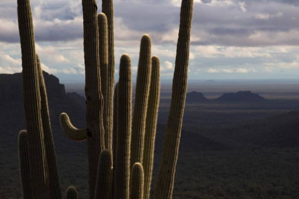 An overlook of superstition wilderness in Apache Territory, just east of Phoenix, Arizona. Just one of the many places to see for those interested in Native travel.