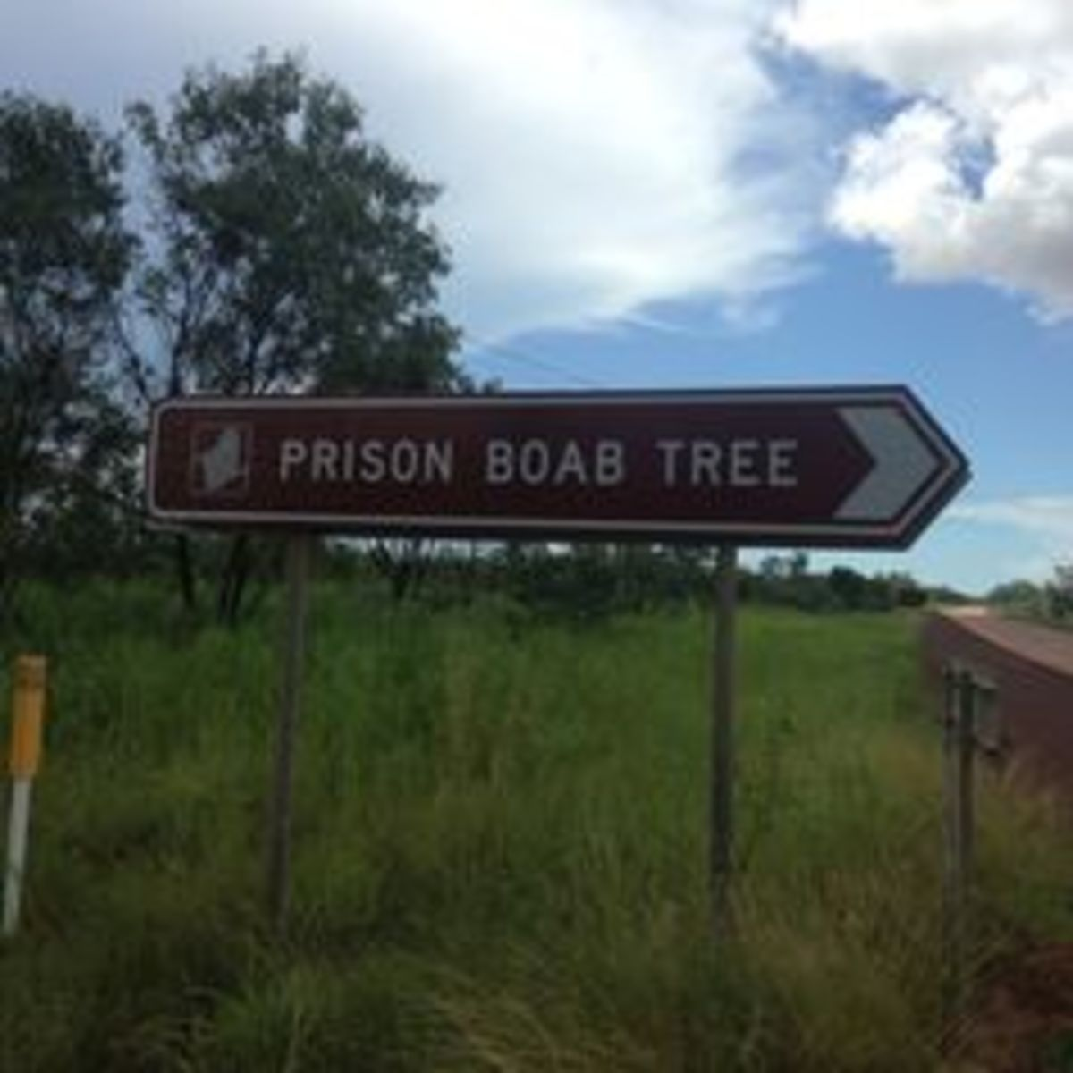 A road sign pointing to the tree.