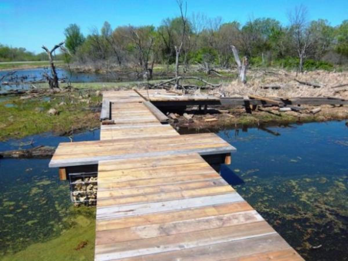 Part of the eco-walk constructed by Haskell's WPO in the Wakarusa Wetlands.