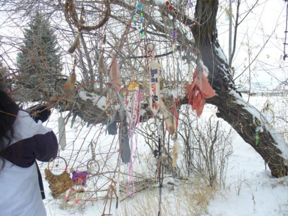 A memorial participant, from the event in 2009, adds to a prayer tree, festooned with gifts of remembrance made by Shoshone children. Mourners have decorated the tree for more than 20 years. (Photos courtesy Patty Timbimboo-Madsen)