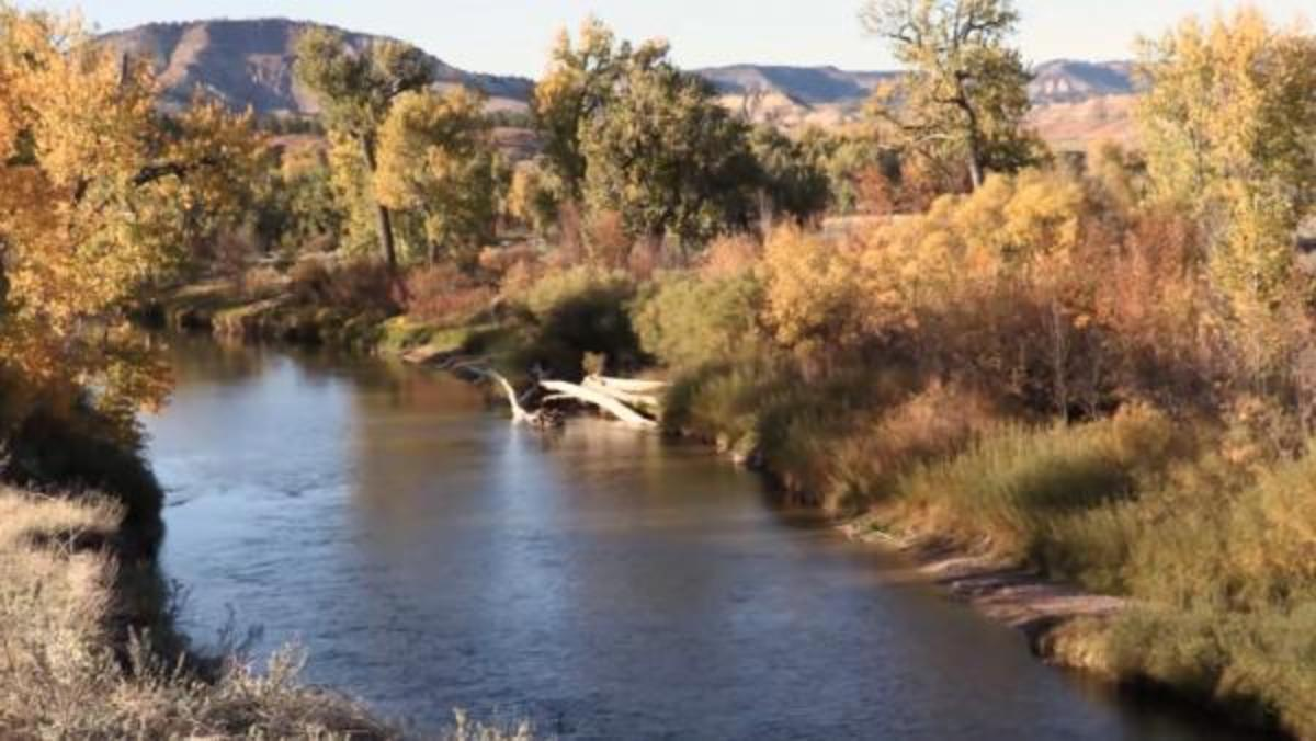 The Tongue River, threatened by the potential for a nearby coal mine and railroad, is a vital part of the Montana landscape as it flows through the Northern Cheyenne Reservation.