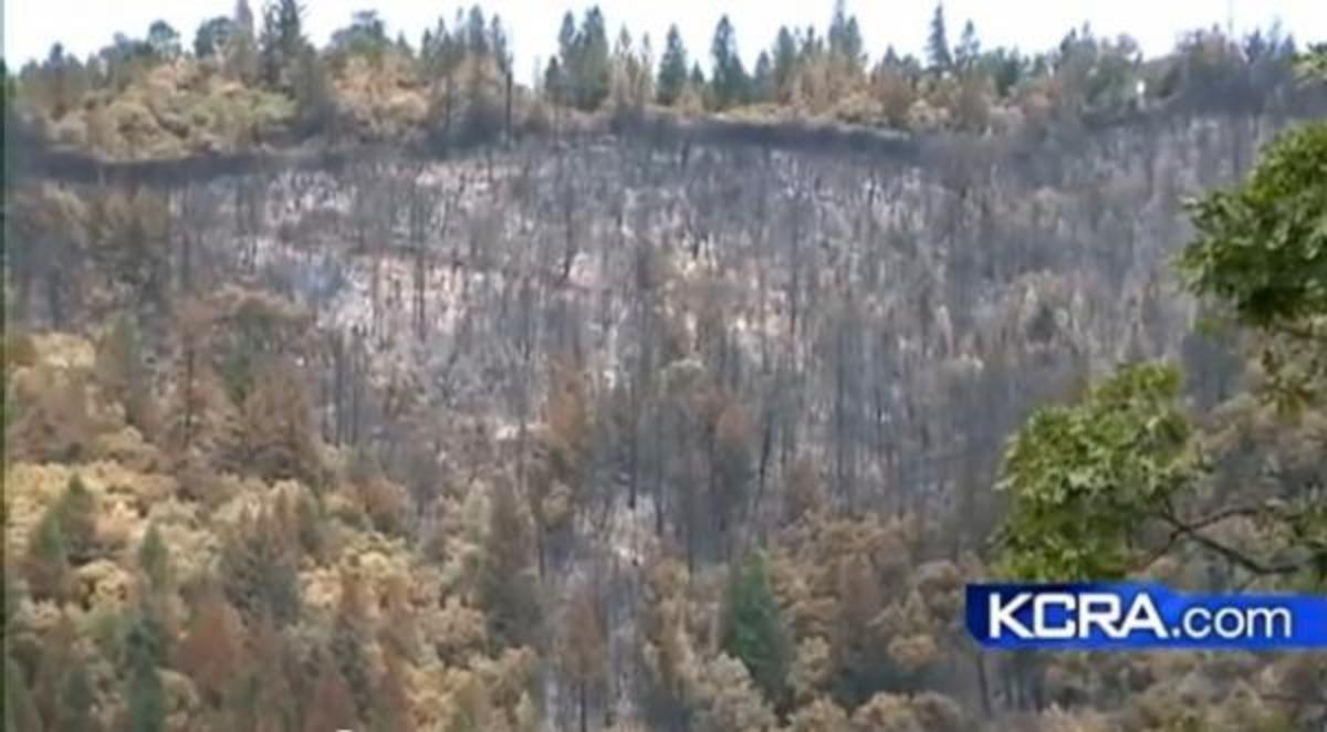 The Robbers Fire, which started July 11, damaged more than 2,600 acres in Placer County, California.