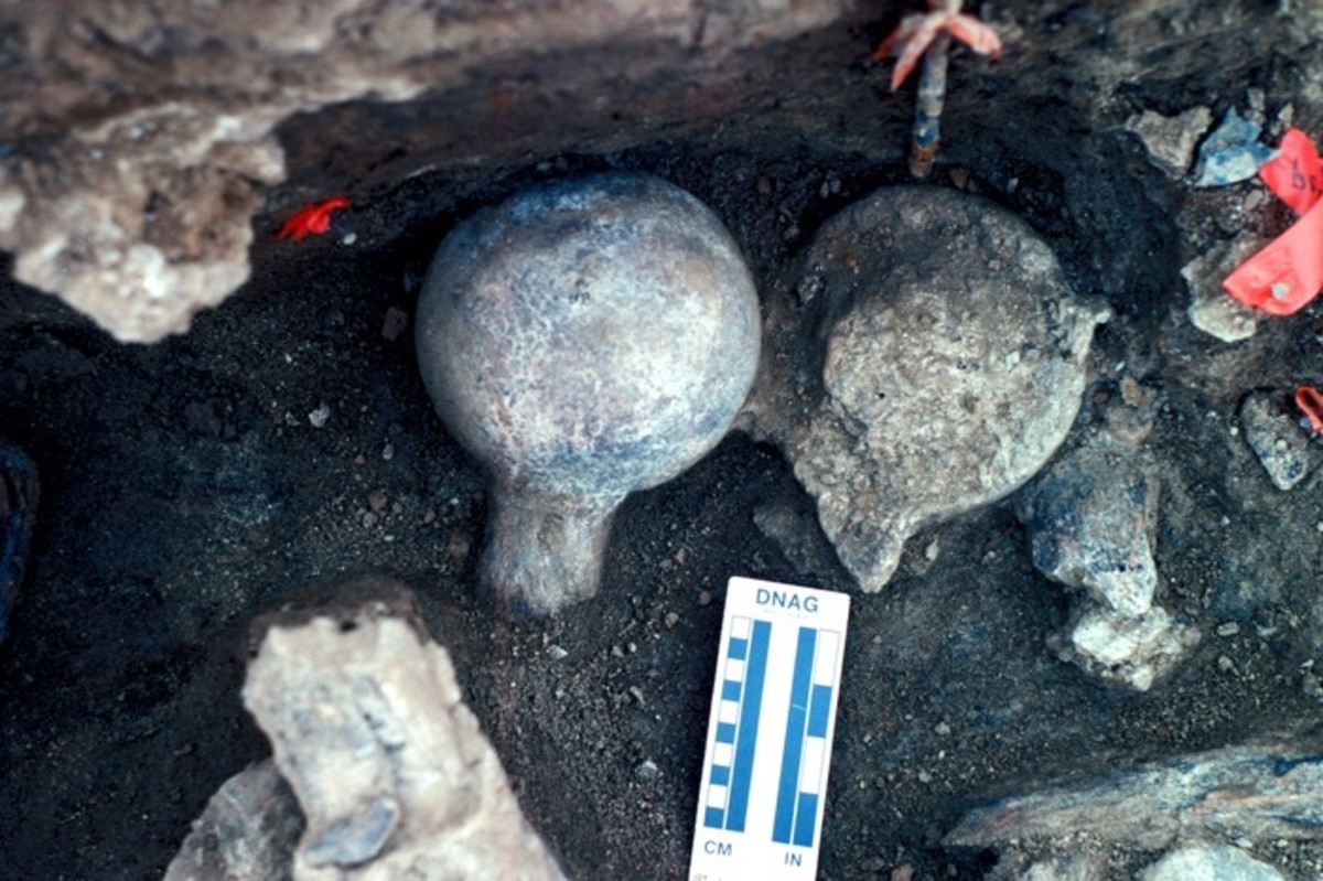 Human remains found at another California site. Humans, 130,000 years ago, mastodon, Two mastodon femur balls, one face up and one face down, are among the remains found at the Cerutti site in San Diego.