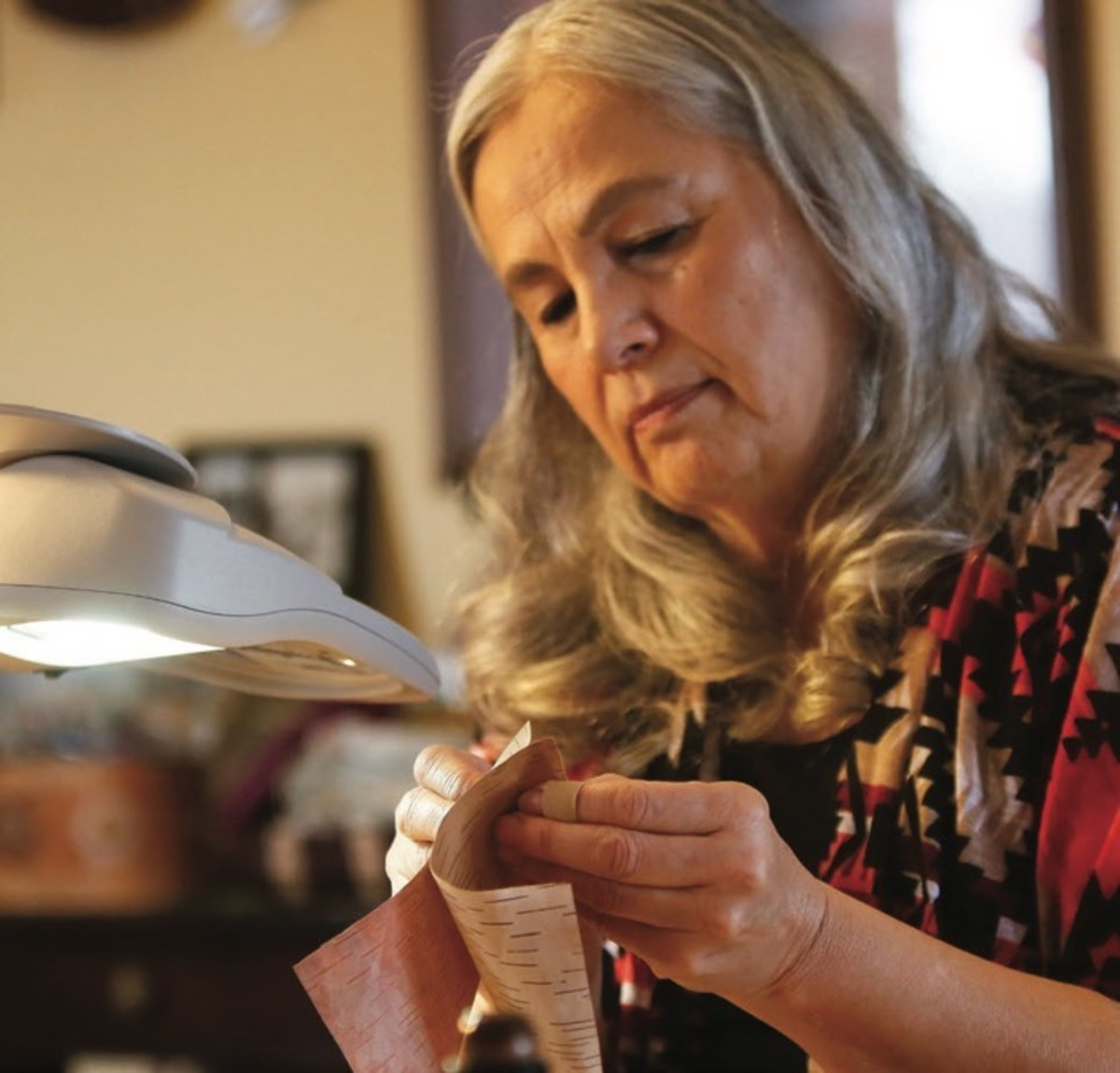 ICMN Issue #2 Master_singlepage_REPAGINATED_Page_062_Image_0001_FEAT_Tree Lives_Denise Lajimodiere carefully peels a piece of birchbark at her home in Moorehead MN_David Samson_Forum News Service_th