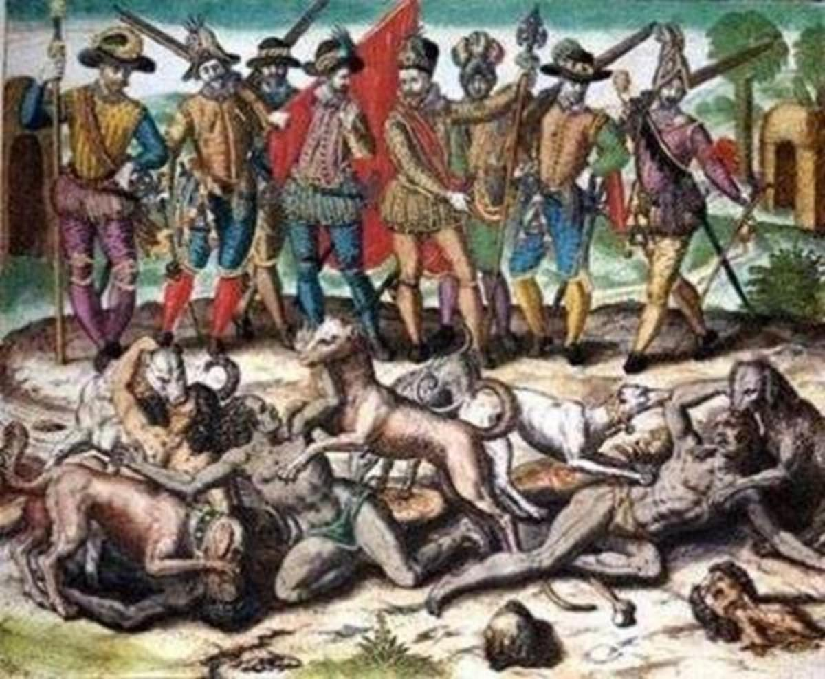 Columbus and his men hunted Natives with war-dogs.