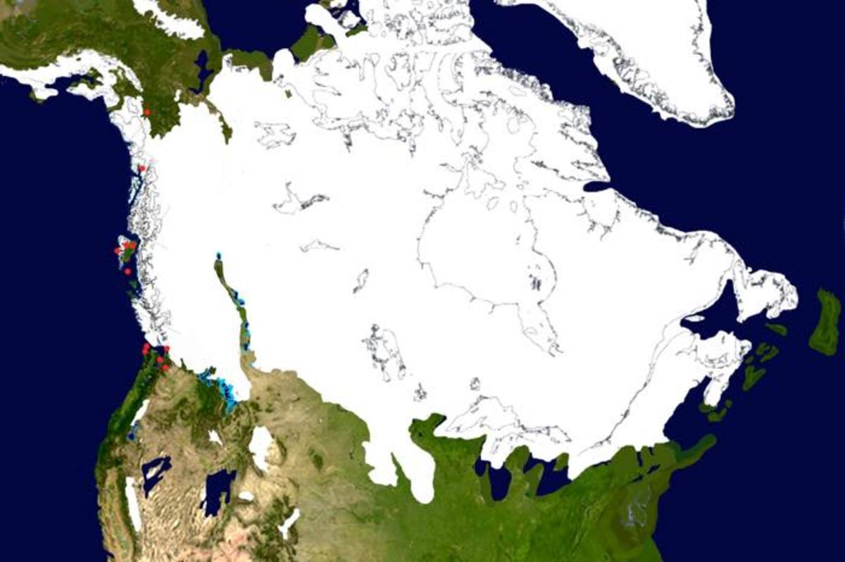 The ice sheet at approximately 16,200 years ago. The coastal ice is melting and more refugia have opened up, but large stretches of coast are still covered in ice.