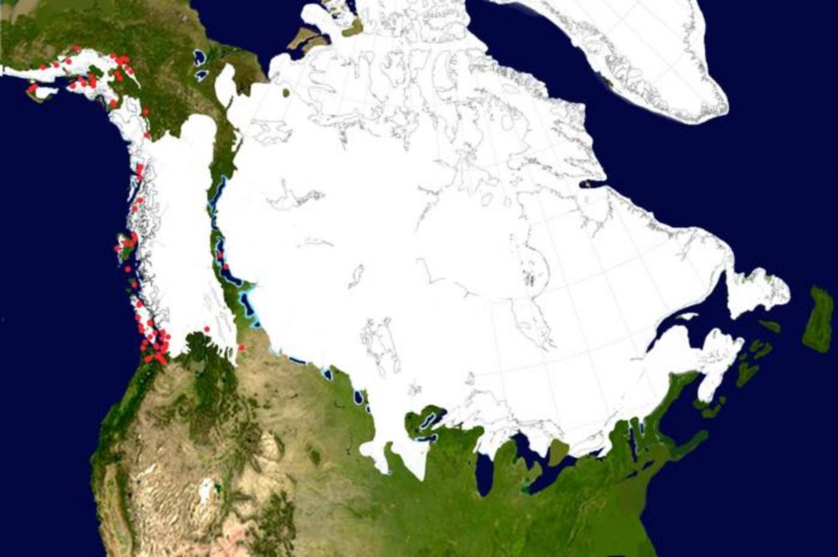 The ice sheets at 14,400 years ago. They have by now split in two, although the ice-free corridor between them is still not passable by foot. The coast now has a number of refugia, but there are still long stretches of ice. By this time Monte Verde in Chile has already been settled for more than 400 years.