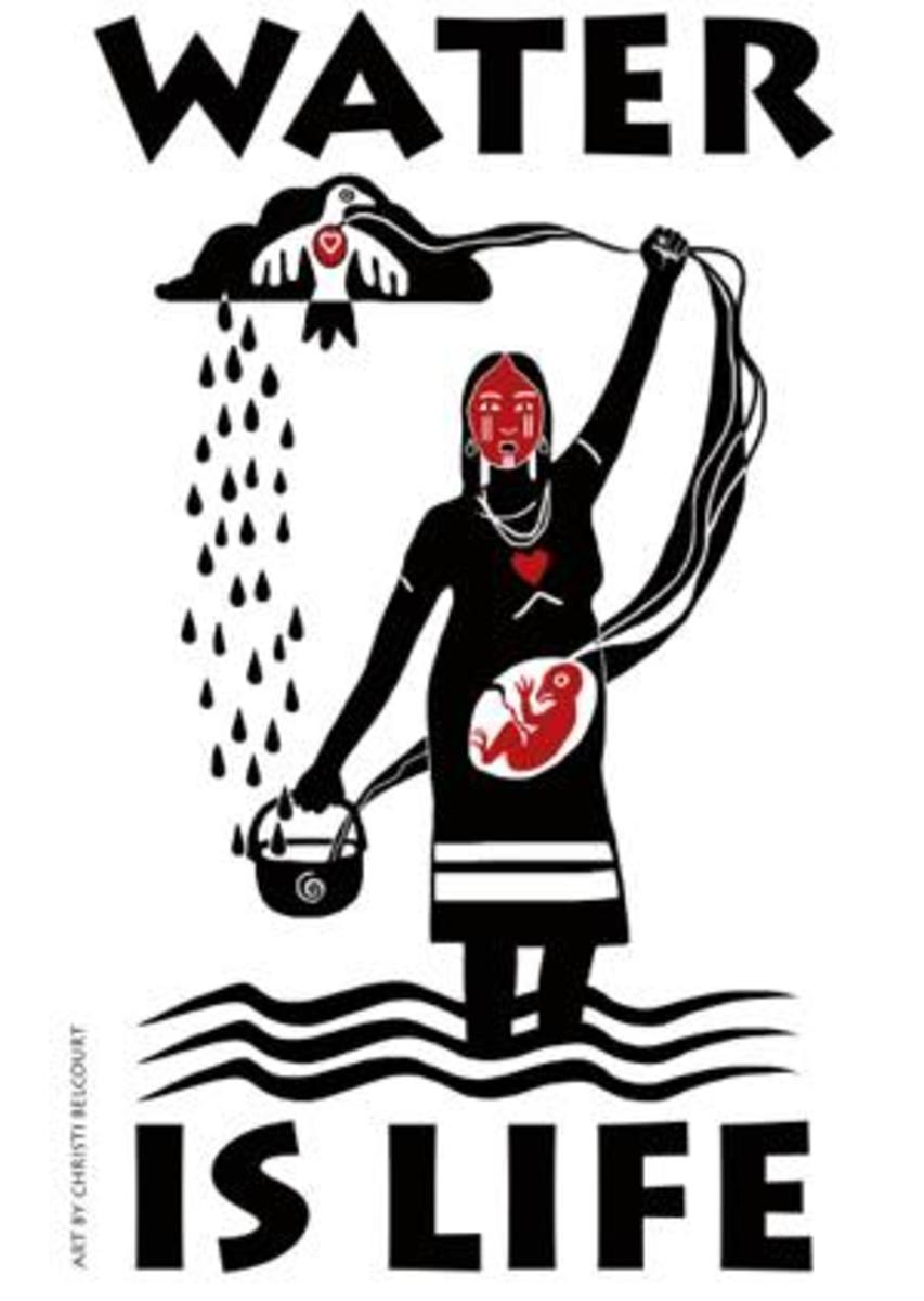 Water protector banner with art by Christi Belcourt, part of the Onaman Collective.