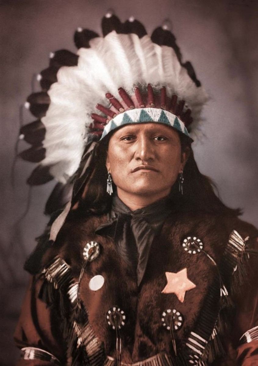 Good Horse, Dakota Chief, Photographed by D.F. Barry, 1880s.