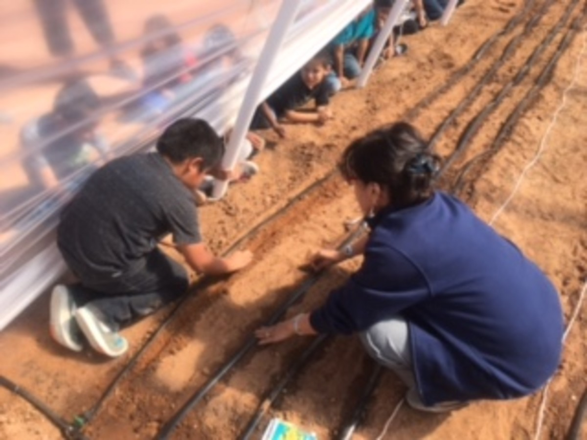 Ground ready? Check. Drip irrigation working? Check. Time to plant seeds. Students of the Beginning Farmer program at Tonalea Day School get ready to plant inside the hoop house.