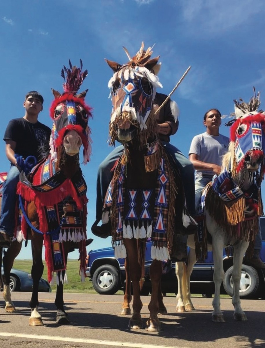 Greg Grey Cloud, Crow Creek Sioux founder of Wica Agli, brought the Sungwatogda (fearless horses) to Standing Rock in August to help stop the pipeline.