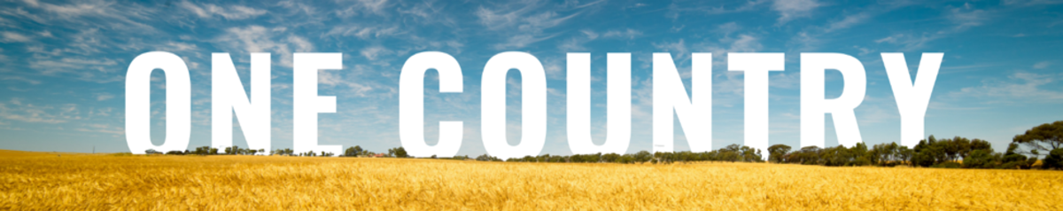 One Country Project banner