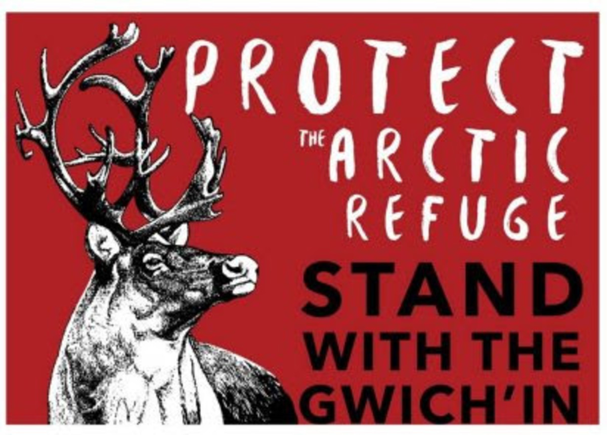 Pictured: Protect the Arctic Refuge - Stand with the Gwich'in image