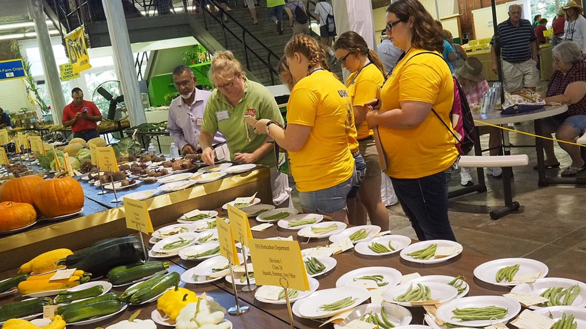 Pictured: Agriculture Building Judging, Iowa State Fair, August 10 2017.