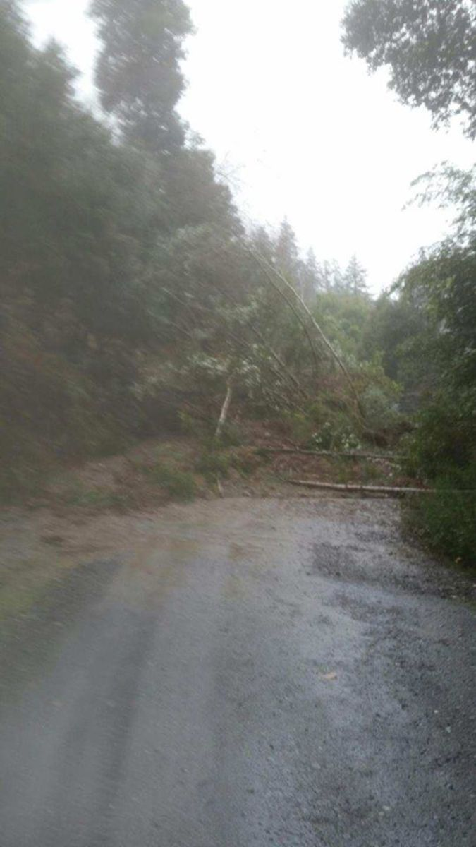 Massive rainfall amounts and runoff triggered a large landslide that closed Dowd Road, a critical emergency evacuation route for Yurok reservation residents.