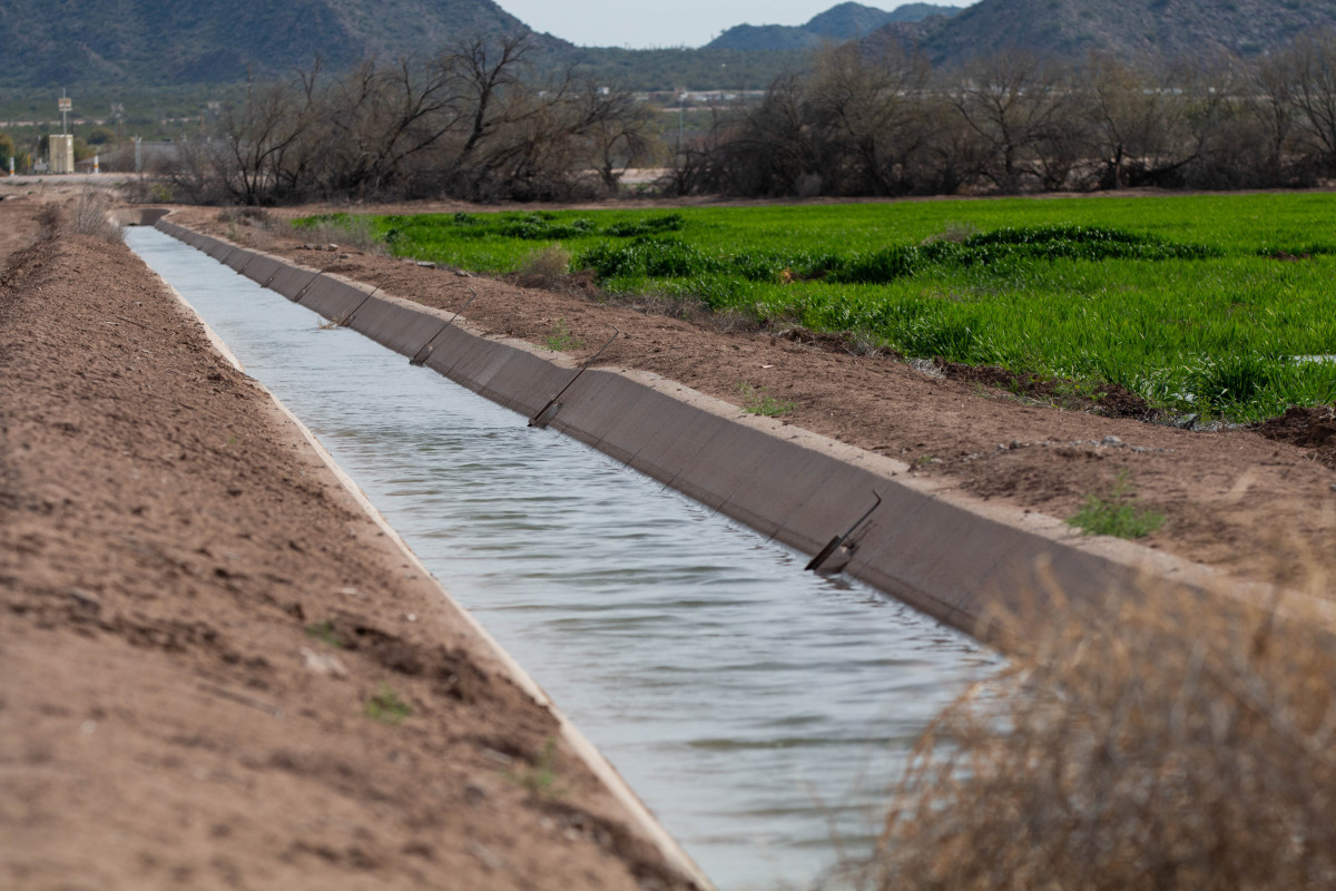 irrigation-canal