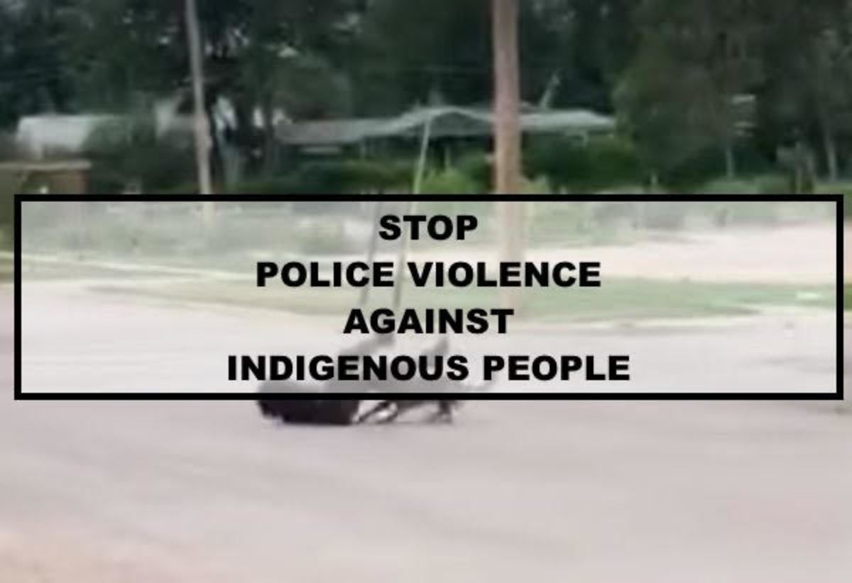 Pictured: Screen grab of video filmed by a witness of the K9 unit attacking the Native man for over 2 minutes even after the police officer shot him with a taser.