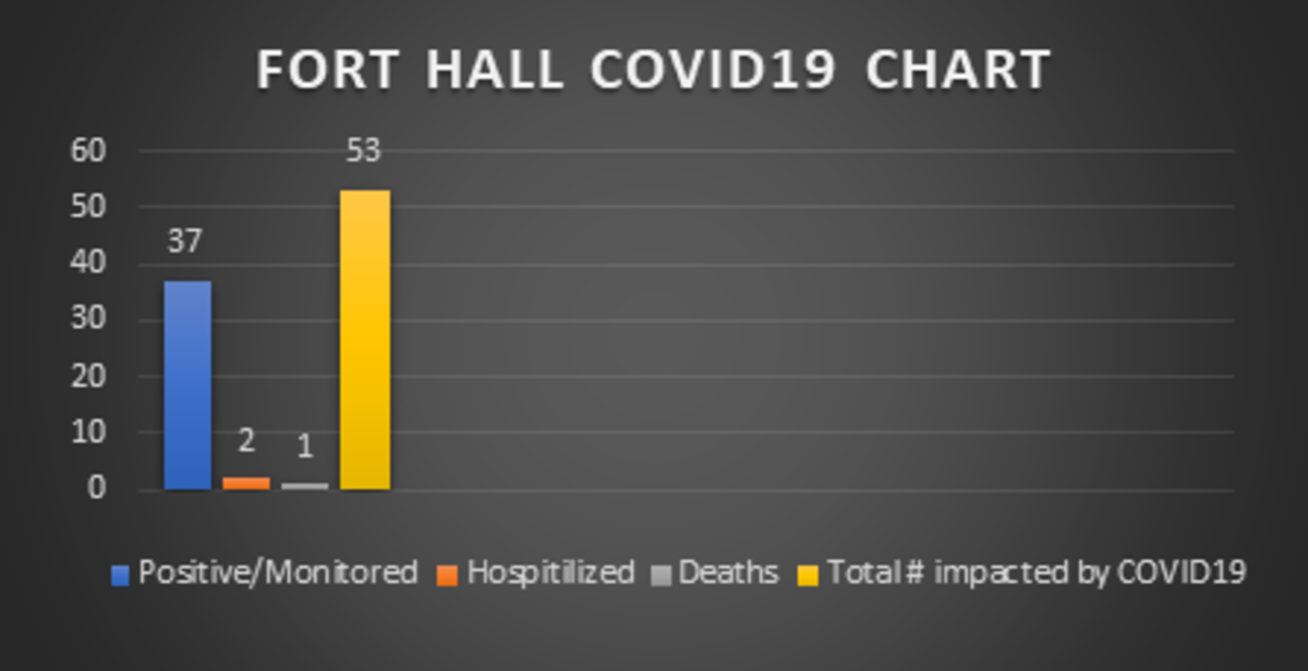 Pictured: Fort Hall COVID 19 Chart, July 29 2020.