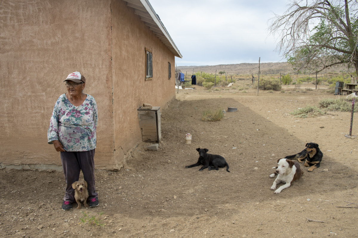 Elizabeth Woody stands in the shade with her dogs, by her home on the Navajo Nation. (Photo by Don J. Usner/Searchlight NM)