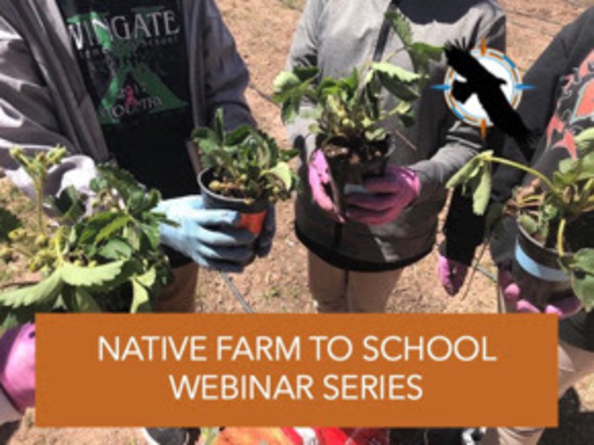 First Nations' Native Farm to School webinar series image