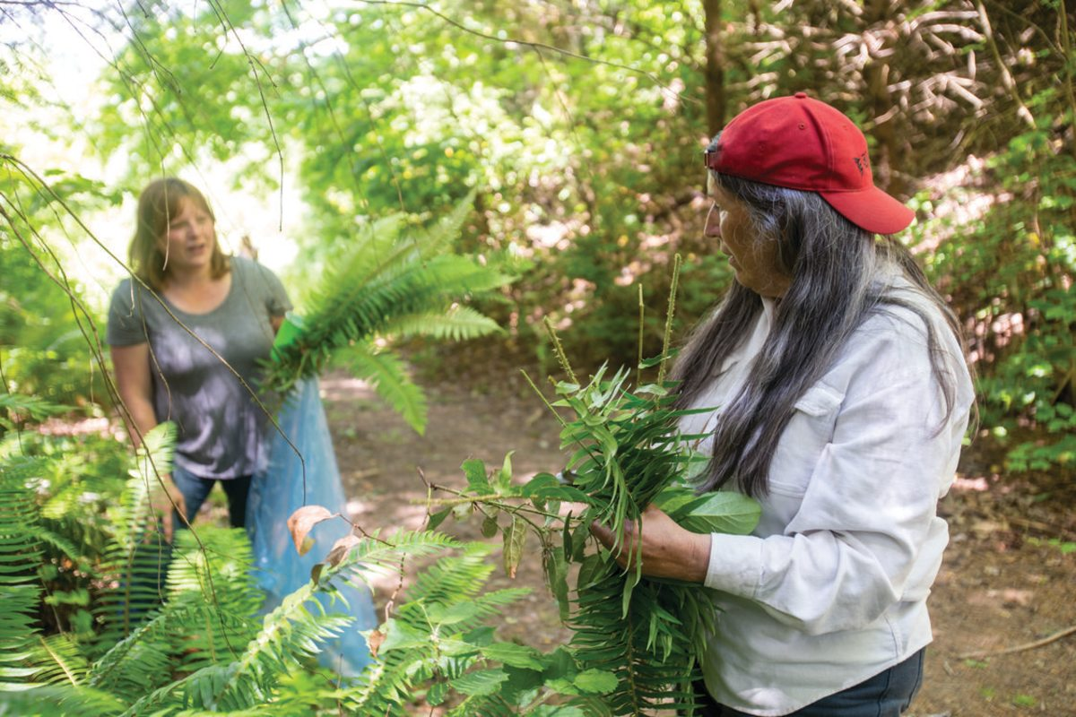 From left, Shawna Zierdt, Cow Creek Band of Umpqua, and Judy BlueHorse Skelton, instructor at Portland State University, gather sword ferns. (Photo courtesy of Oregon Metro)