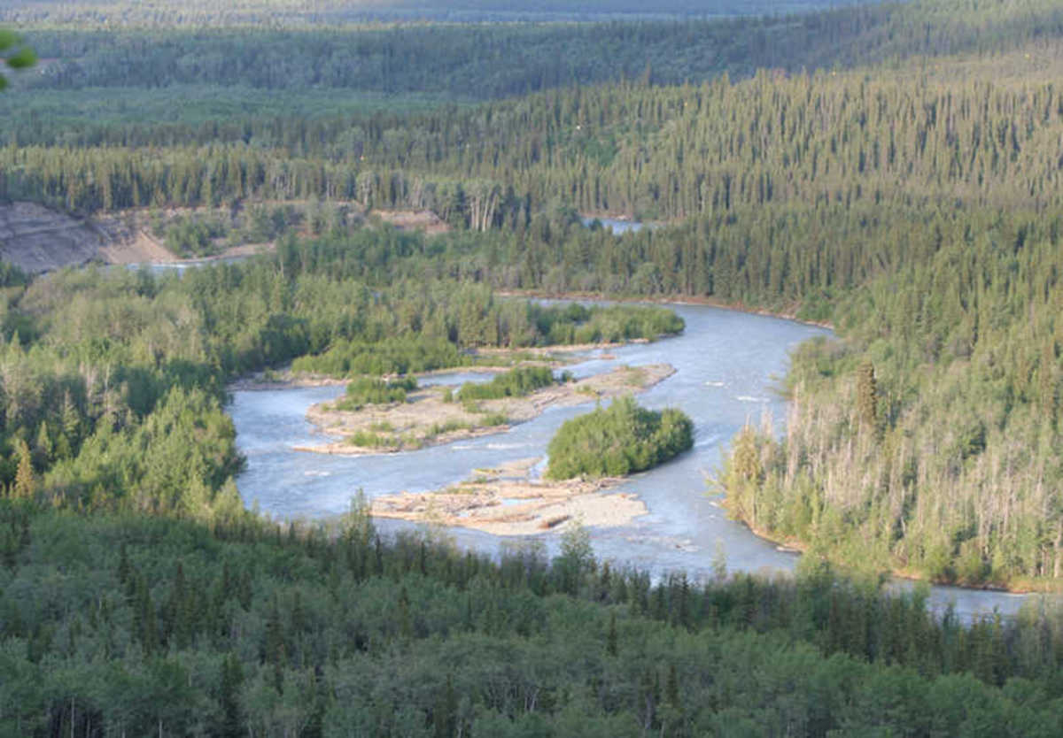 The Klutina River, Alaska. (Photo courtesy of Alaska Department of Fish and Game website)