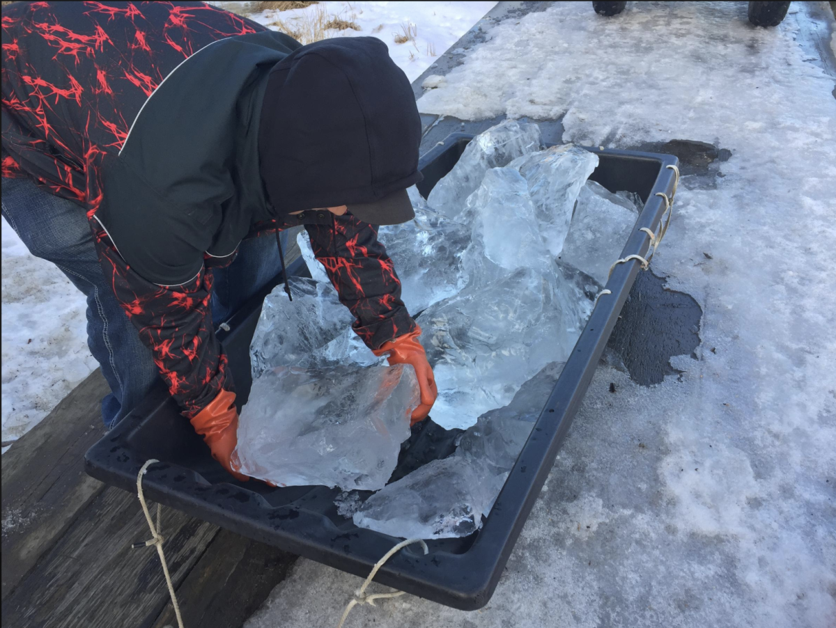 Edward Enoch, Yup'ik, unloads chunks of ice chipped out of a river and hauled home by snow-machine to melt for drinking, washing, and other uses. Location: Tuntutuliak, in western Alaska.