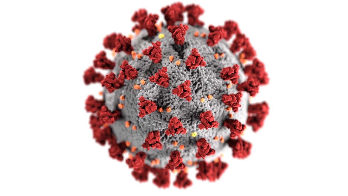 This illustration, created at the Centers for Disease Control and Prevention (CDC), reveals ultrastructural morphology exhibited by coronaviruses. Note the spikes that adorn the outer surface of the virus, which impart the look of a corona surrounding the virion, when viewed electron microscopically. A novel coronavirus, named Severe Acute Respiratory Syndrome coronavirus 2 (SARS-CoV-2), was identified as the cause of an outbreak of respiratory illness first detected in Wuhan, China in 2019. The illness caused by this virus has been named coronavirus disease 2019 (COVID-19). (Photo by Alissa Eckert, MS, Dan Higgins, MAMS, Centers for Disease Control and Prevention)