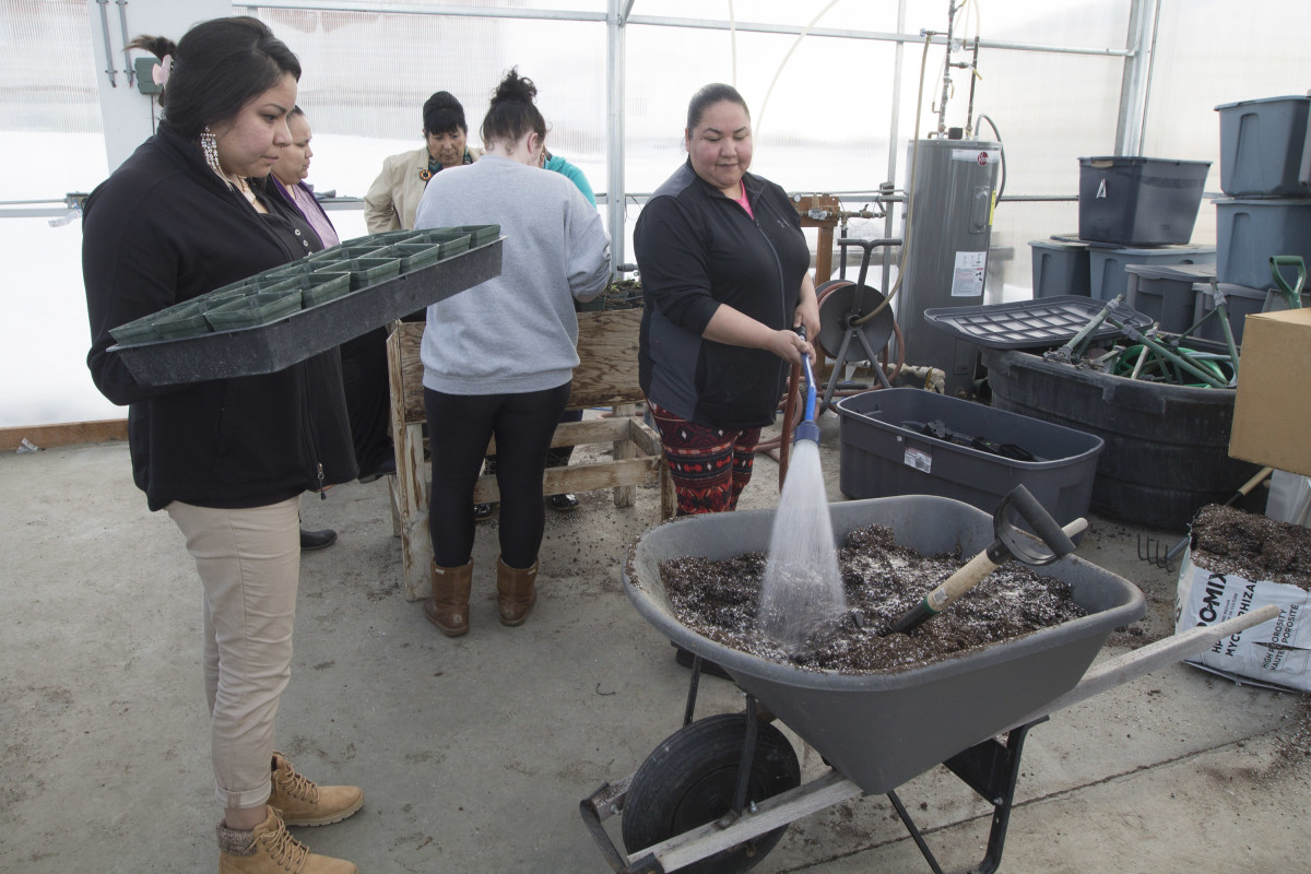 Students add moisture to the soil in order to have ideal soil conditions while transplanting their plants in Cheryl Morales' ethnobotany class. (Photo by Native News)