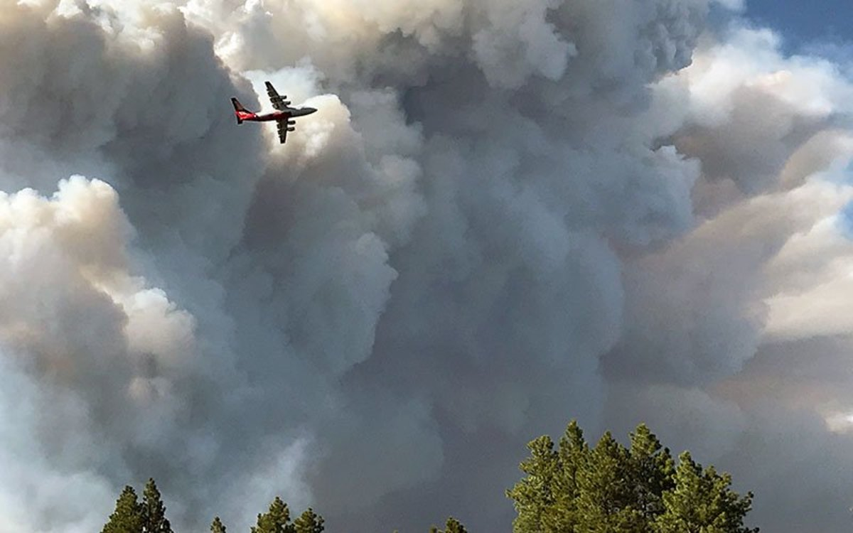 The Mangam Fire on the North Rim of the Grand Canyon has scorched 54,845 acres and is expected to keep growing. An air tanker flies near the Mangum Fire smoke column in this June 12 photo. (Photo courtesy Kaibab National Forest)