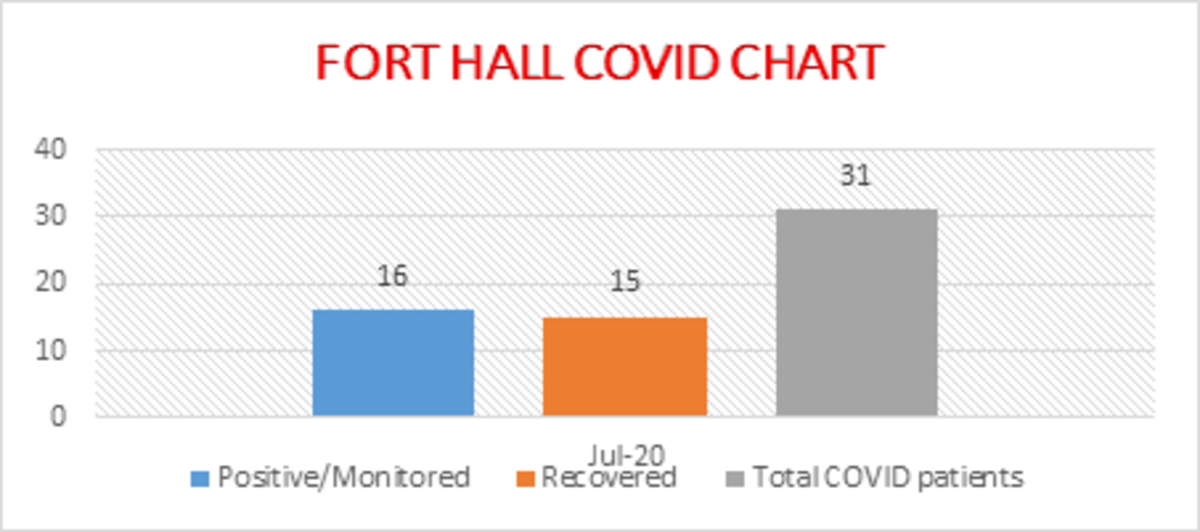 Pictured: A chart showing Shoshone-Bannock Tribes COVID-19 cases.