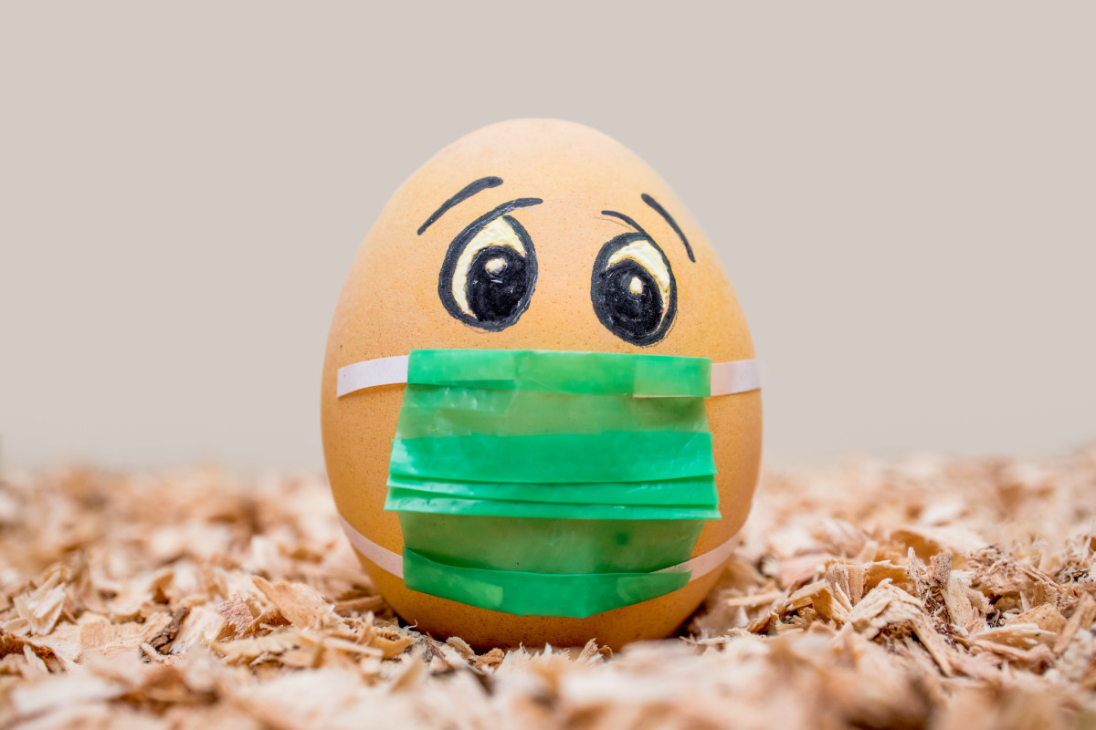Worried Easter egg wearing a face mask during COVID-19. (Photo by Ivan Radic, Creative Commons)