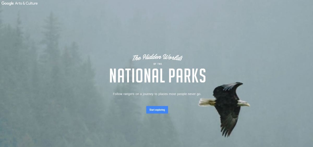 "Google Arts and Culture's ""The Hidden Worlds of National Parks"""