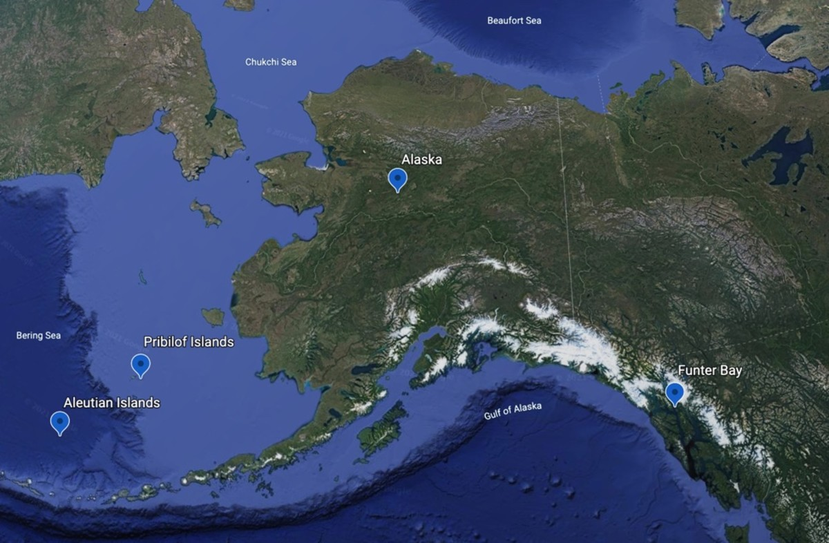 Map with markers for Pribilof and Aleutian islands and Funter Bay, site of a World War II internment camp. (Courtesy of Google Earth).