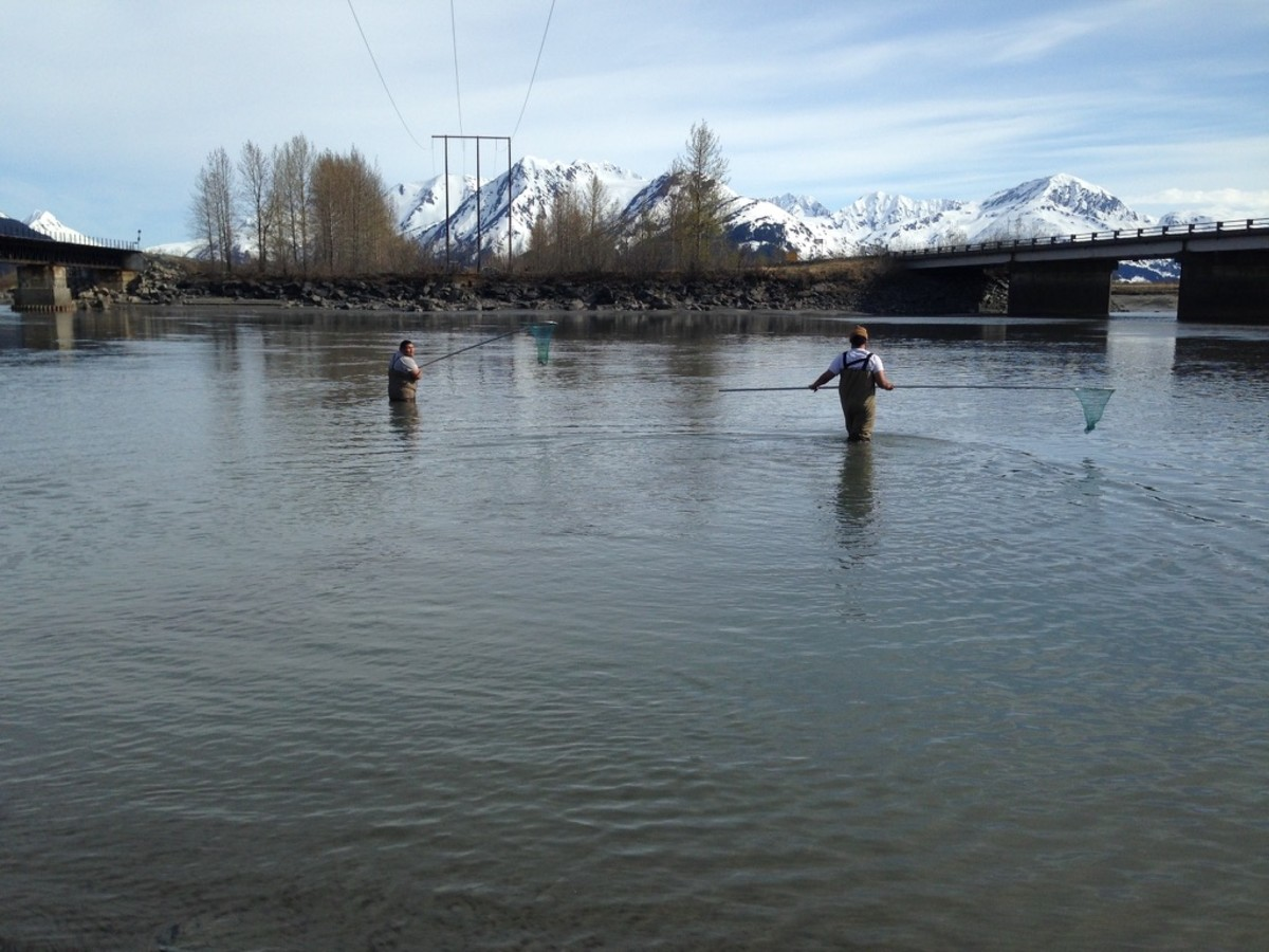 Two men dipnetting in the Twentymile River on May 18, 2021. (Photo by Joaqlin Estus, Indian Country Today)