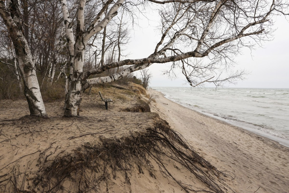 Lake Michigan shoreline is seen at Kohler-Andrae State Park near Sheboygan, Wis. The area supports rare and fragile interdunal and ridge and swale wetlands systems, Pat Trochlell, a retired Wisconsin Department of Natural Resources wetland ecologist, told Wisconsin Watch in 2018. The habitat was created over thousands of years, continually shifting with the wind. The dunes are held together without soil by roots, supporting several threatened species of plants and insects. Photo taken April 27, 2021. (Photo by Dee J. Hall, Wisconsin Watch)