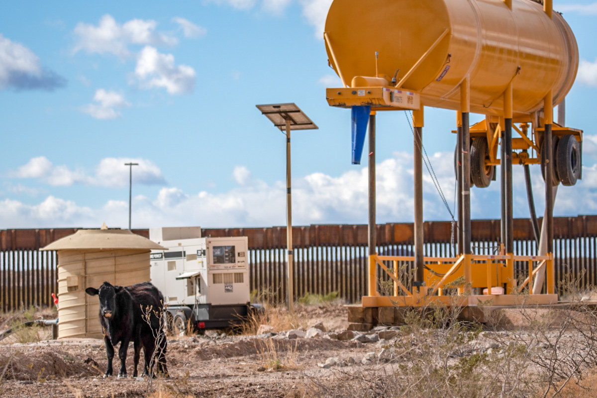 Cattle wander past a well used by contractors to mix the concrete necessary for building a border barrier at San Bernardino National Wildlife Refuge on March 13, 2021. (Photo by Isaac Stone Simonelli/Cronkite Borderlands Project)