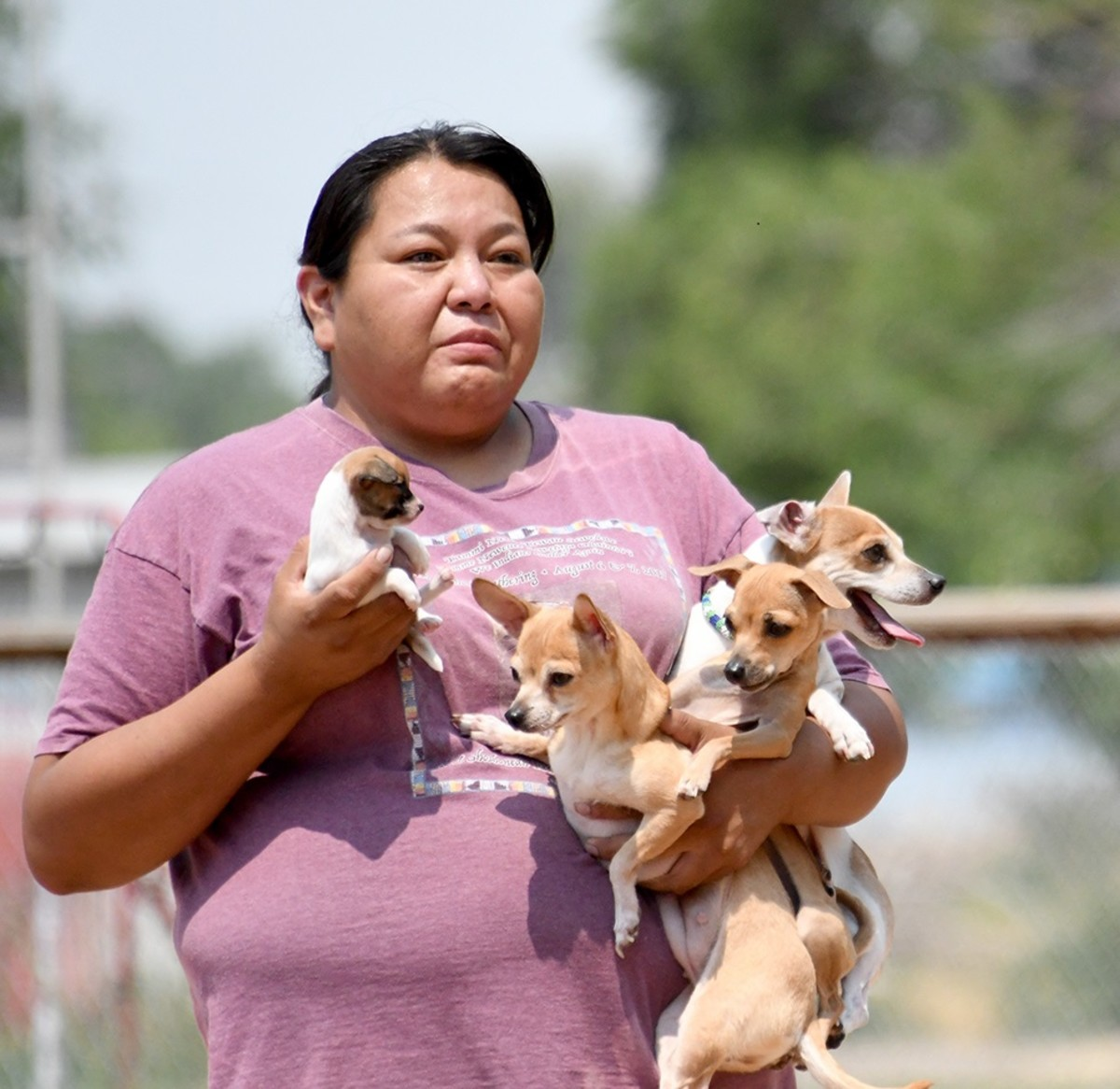 Wynter Begay clasps her Chihuahua puppy, Nadia, in one hand and holds the pup's parents and older sibling on the other arm at the Rez Dog competition Friday, July 23, 2021, at the Shoshone-Bannock Tribes' lands at Fort Hall, Idaho. Nadia won the Smallest Rez Dog contest. (Photo by Lori Edmo for Indian Country Today)